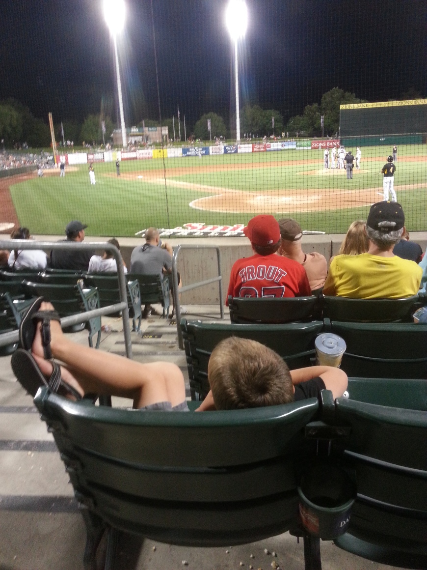 Bees game
